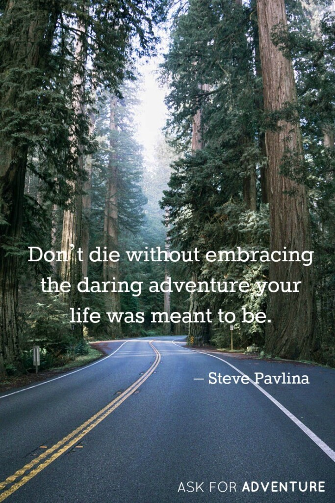 Don't die without embracing the daring adventure your life was meant to be. -Steve Pavlina