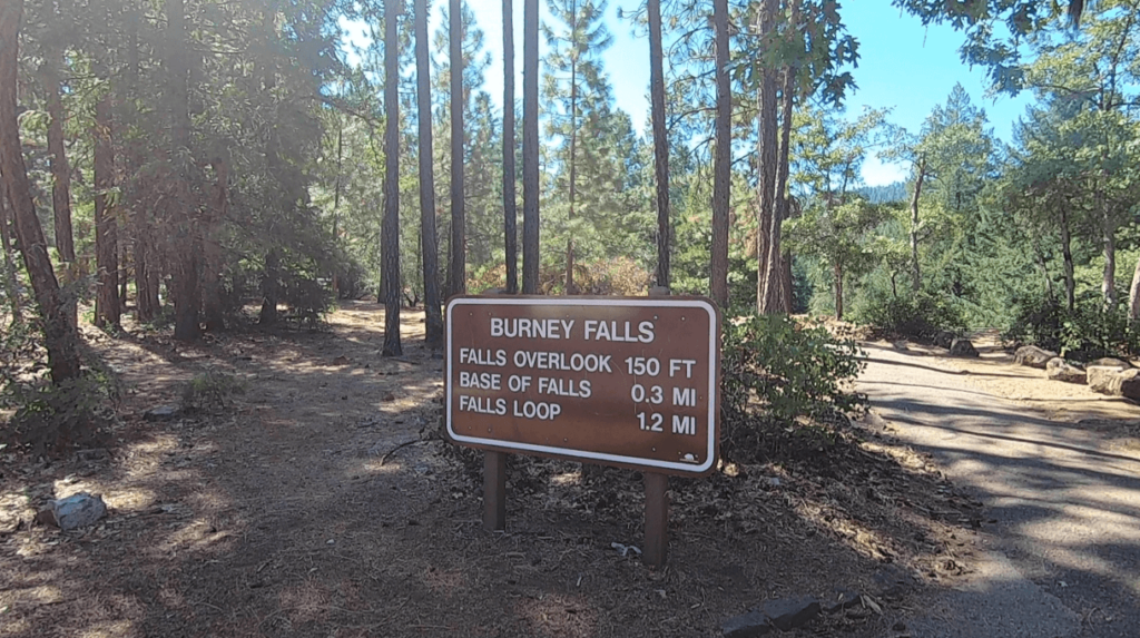 hiking burney falls state park