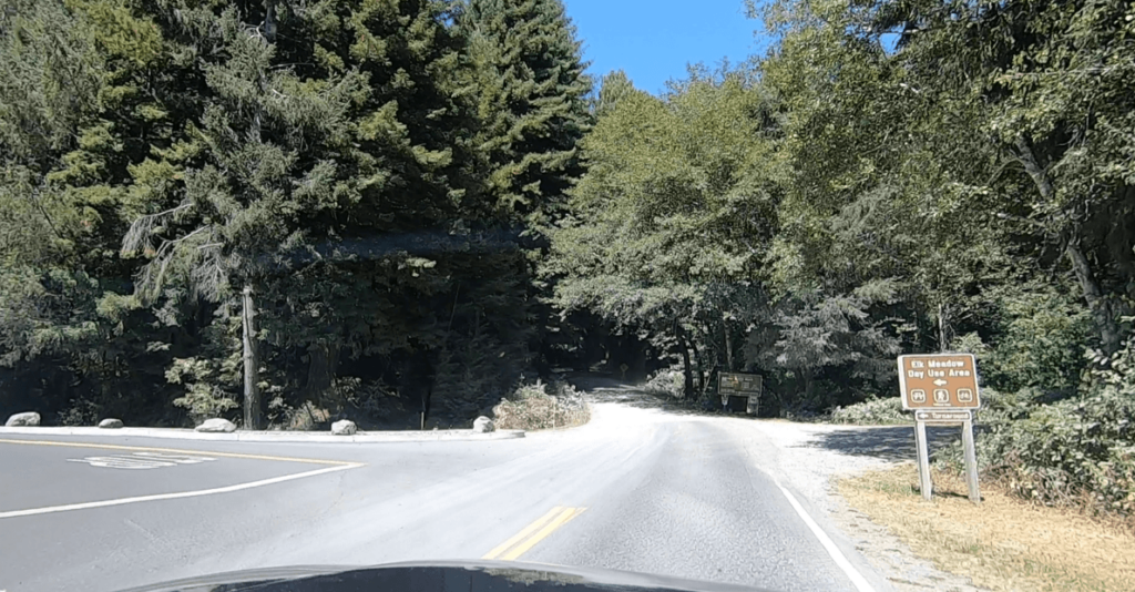 gravel road that leads to fern canyon