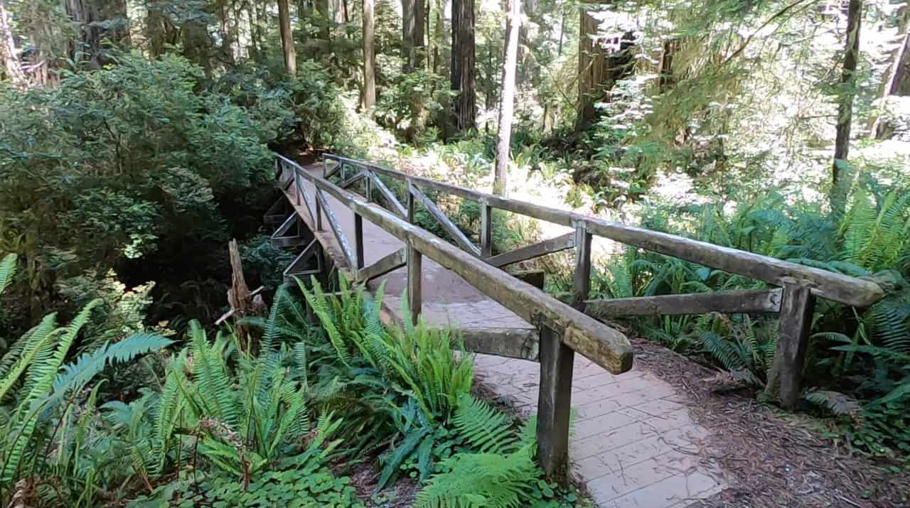 bridge to peterson memorial trail