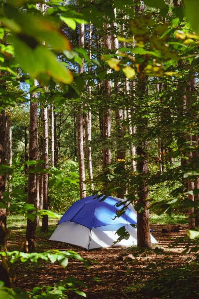 blue tent set up in the forest