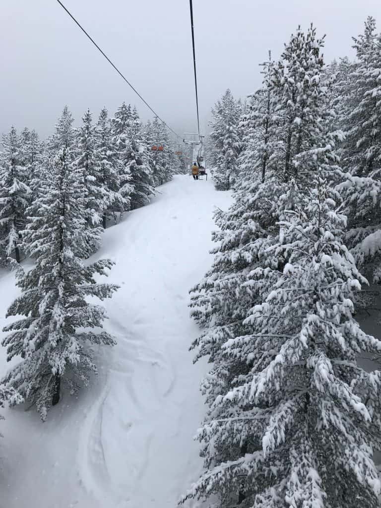 A ski lift going up the mountain with snow covering the ground and trees.
