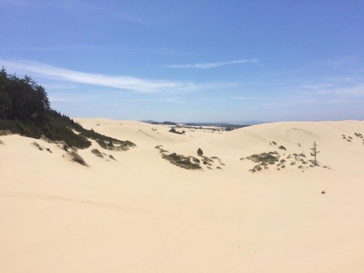 View from the top of sand dunes in Oregon ridding area ump qua dunes