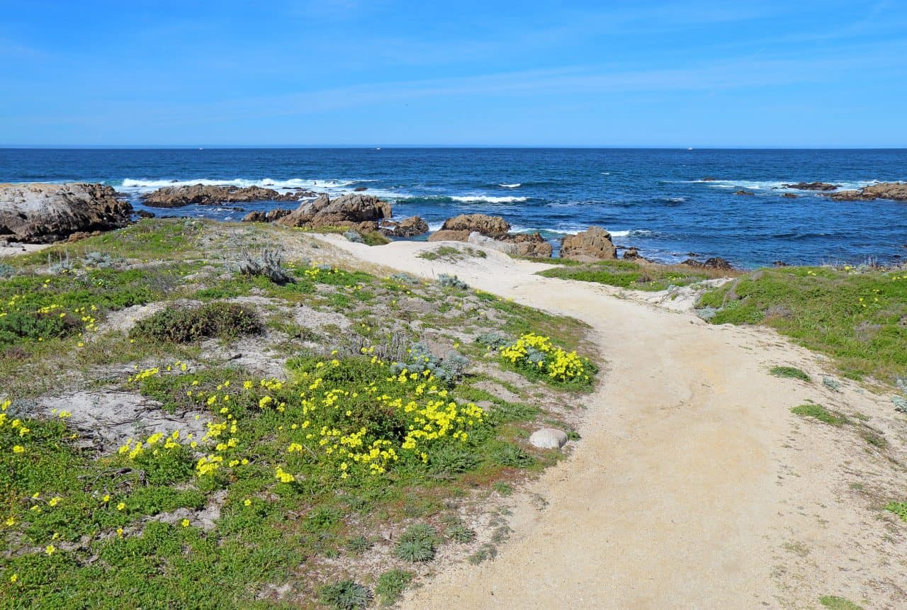 Waters of Asilomar State Beach in Northern California.