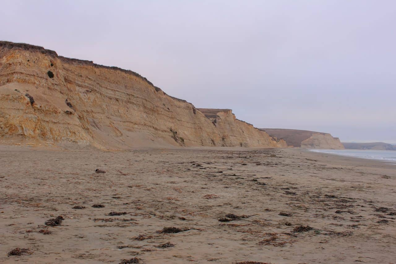 Sandstone cliffs and the sandy beach at Drakes Beach in California.