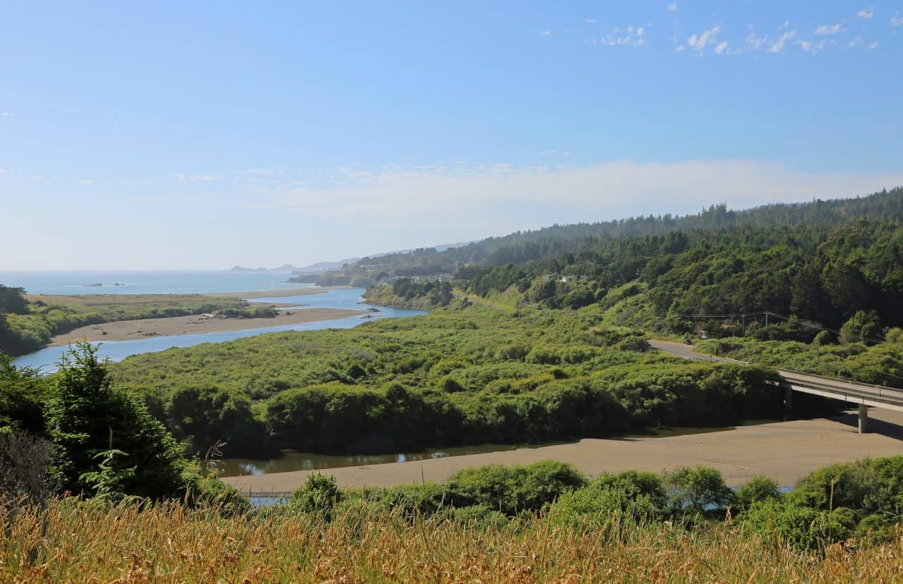 Gualala Point Regional Park beach and greenery in California.