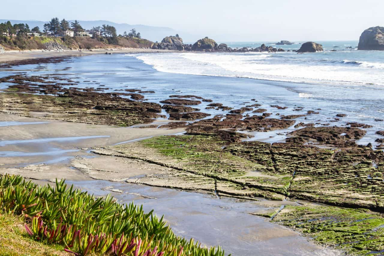 View of Pebble beach rocks and tide pools in Northern California.