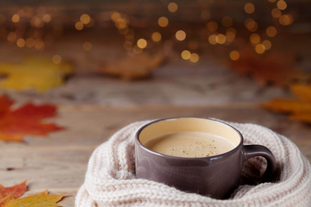 cozy fall cup of coffee