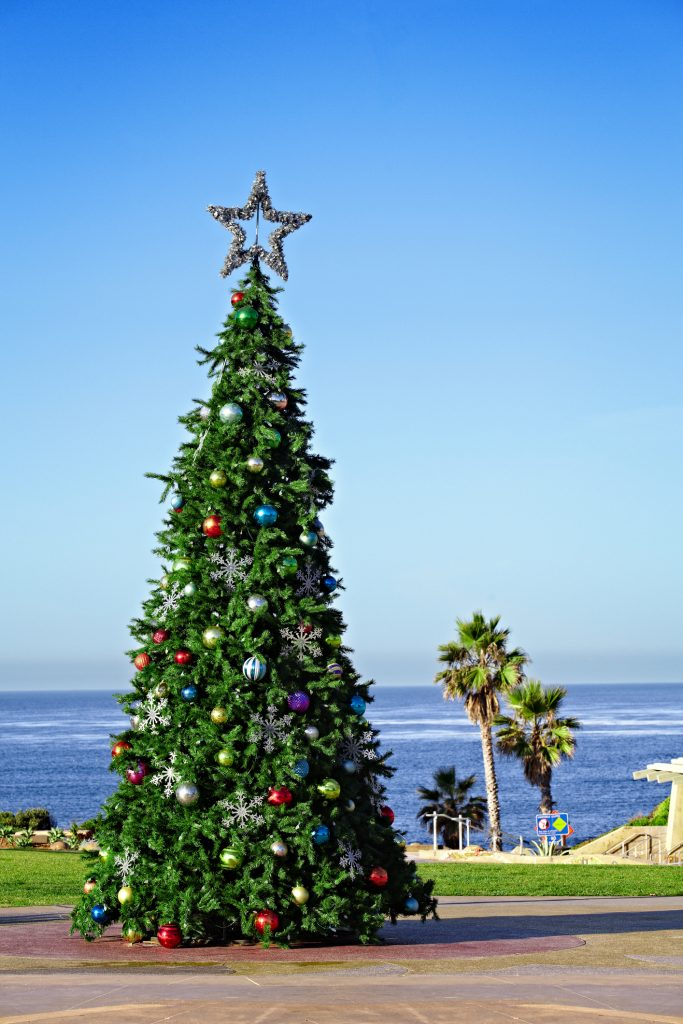 christmas tree by the ocean
